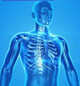 Skelet in blau
